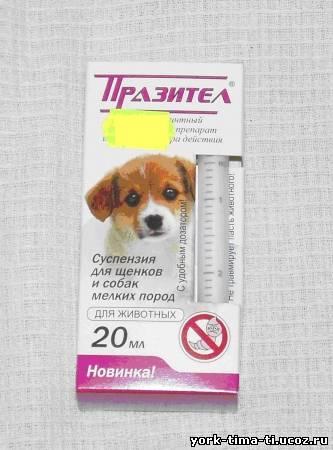 цестодозов щенков и собак